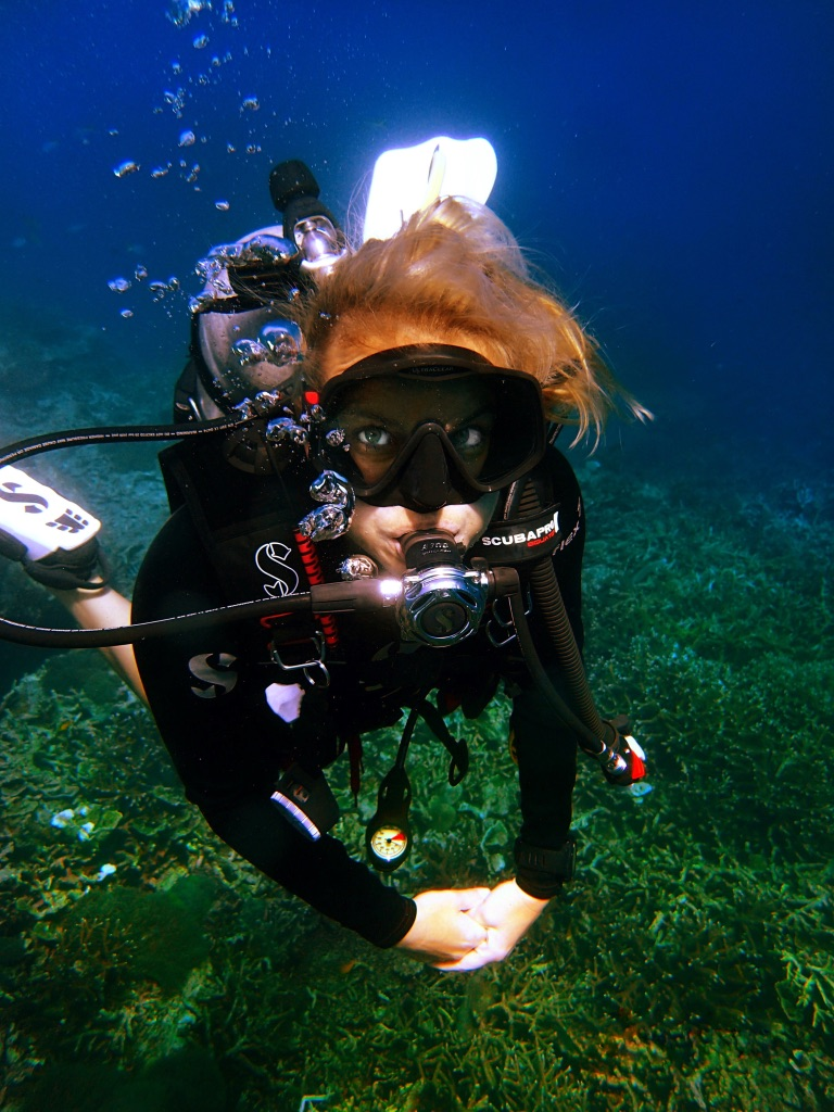 Scuba Diving Divemaster Diarys Vanessa Johnson
