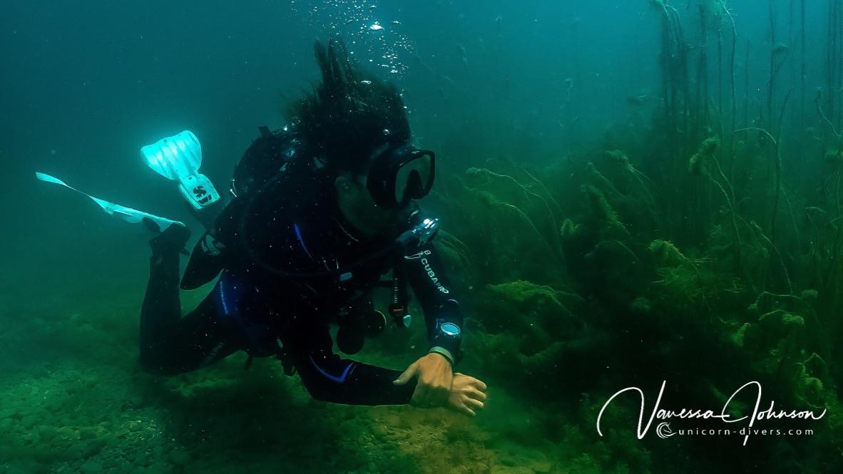 Tauchen-Augsburg-Friedberger-See-Unicorn-Divers-Unterwasser-Photo